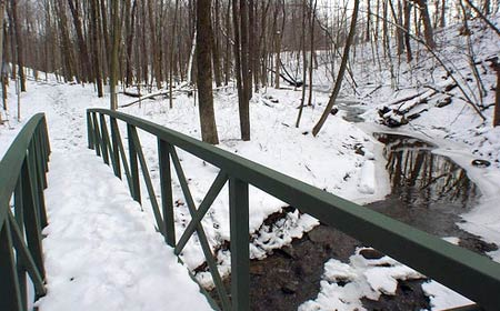 Picture of hiking trail in winter